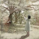 トイ楽器で童話や絵本の不思議な世界を作るソロアーティスト「木目鳥」が、ファーストアルバム「Mokumedori」をリリース