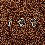 オーストリアのエレクトロニック・ポップデュオ「LEYYA」オシャレなニューシングル「Zoo」のMVを公開
