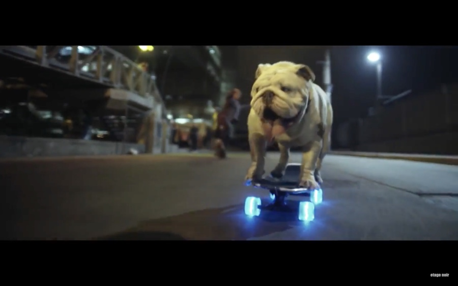Bulldog Skater Otto - MADE VISIBLE (Parov Stelar feat. Blaktroniks - Let's Roll)